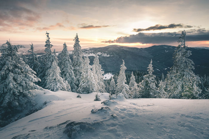 Beauty In Nature Cloud - Sky Cold Temperature Covering Environment Frozen Landscape Mountain Mountain Peak Nature No People Non-urban Scene Outdoors Scenics - Nature Sky Snow Snowcapped Mountain Sunset Tranquil Scene Tranquility Tree Winter