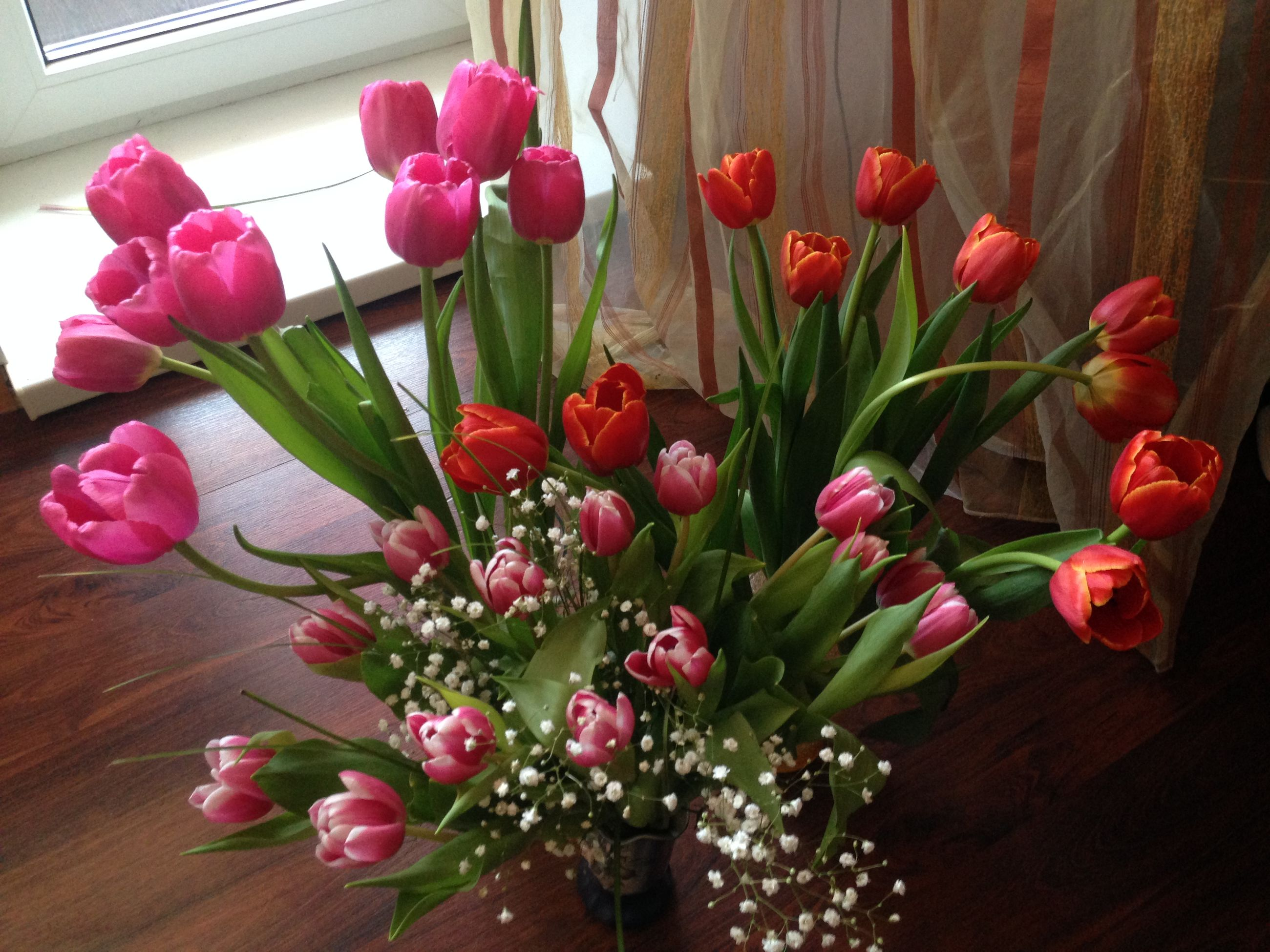 flower, freshness, fragility, indoors, petal, pink color, vase, growth, beauty in nature, flower head, red, nature, tulip, plant, decoration, stem, home interior, table, leaf, bunch of flowers