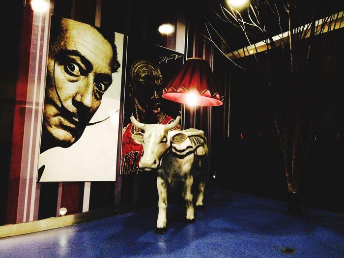 Night Out Cocktails Dalí Jordan