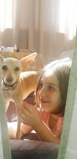 Toyterier Toyterrier Dog Lover Dogstgram