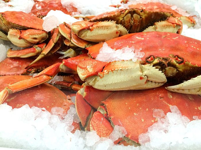 Crab 😚 Freshness Seafood Food And Drink Healthy Eating Food Close-up Cold Temperature No People Ready-to-eat Indoors  Day Seattle, Washington Pike Place Market Crab Dungeness Market Farmers Market SHELLFISH  Sea Food And Drink Foodporn Health Freshness