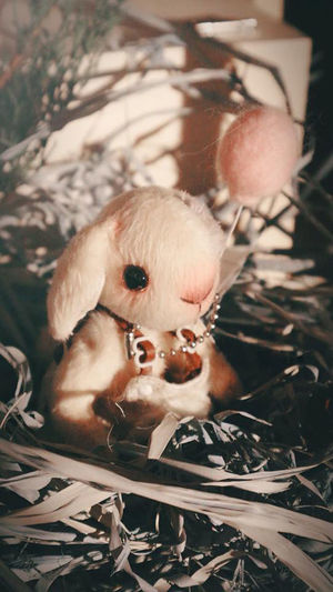 Rabbit doll Doll Close-up Day Domestic Animals Focus On Foreground Human Representation Mammal Nature No People One Animal Outdoors Plant Rabbit Dog Rabbit Doll Representation Selective Focus Toy Tree Young Animal