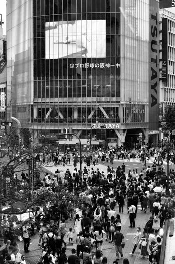 Ready, Steady, Go! ... the crowds rushing across Shibuya crossing Large Group Of People Crowd City Cityscape Been There. Streetphotography Street Photography