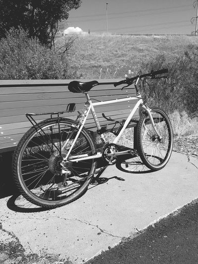 Jordan Parkway Trail. Sundayride Eyeem BestShots Black And White Photography Classic Bike Schwinn Wanderer Bicycle Adventuring Riding Solo Peddling MonochromePhotography EyeEm Best Shots - Black + White