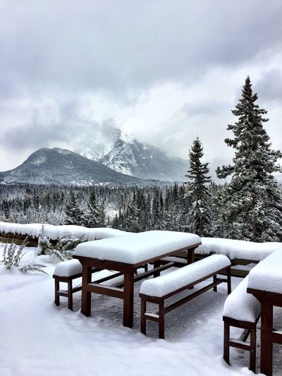 Canada Canadian Rockies  IPhoneography Snow Winter Cold Temperature Tree Nature Sky Mountain Day Plant Beauty In Nature Seat White Color No People Table Cloud - Sky Scenics - Nature Architecture Snowcapped Mountain Absence Outdoors