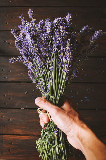 Beauty In Nature Close-up Day Flower Flower Head Fragility Freshness Growth Holding Human Body Part Human Hand Lavender Lavenderflower Nature One Person Outdoors People Plant Real People