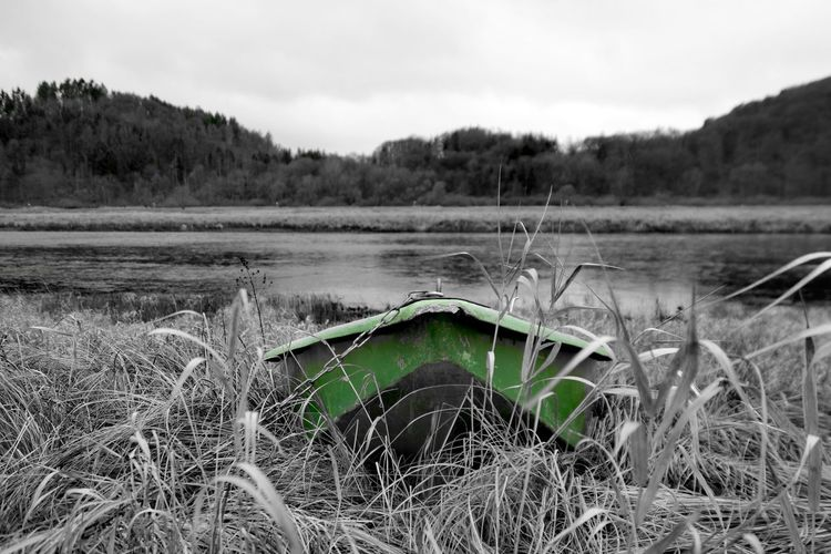 stranded Edersee Germany Nature Photography Beauty In Nature Colorsplash My Point Of View My Place To Relax Early Morning Green Color Water Nautical Vessel Lake Sky Grass Reed - Grass Family Countryside Dam Scenics Tranquil Scene Tranquility