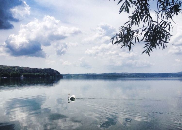 Lago Di Bracciano Lake Lago Calma 😘 Water Born To Be Wild Romantic Beautiful Nature Places You Must To See Places Get Inspired Lake View Lakeside Lakes  Lake Life Lovely Eyes4photography Like Fan Bestpic Nice Wonderland Wonderful Wildlife & Nature Best