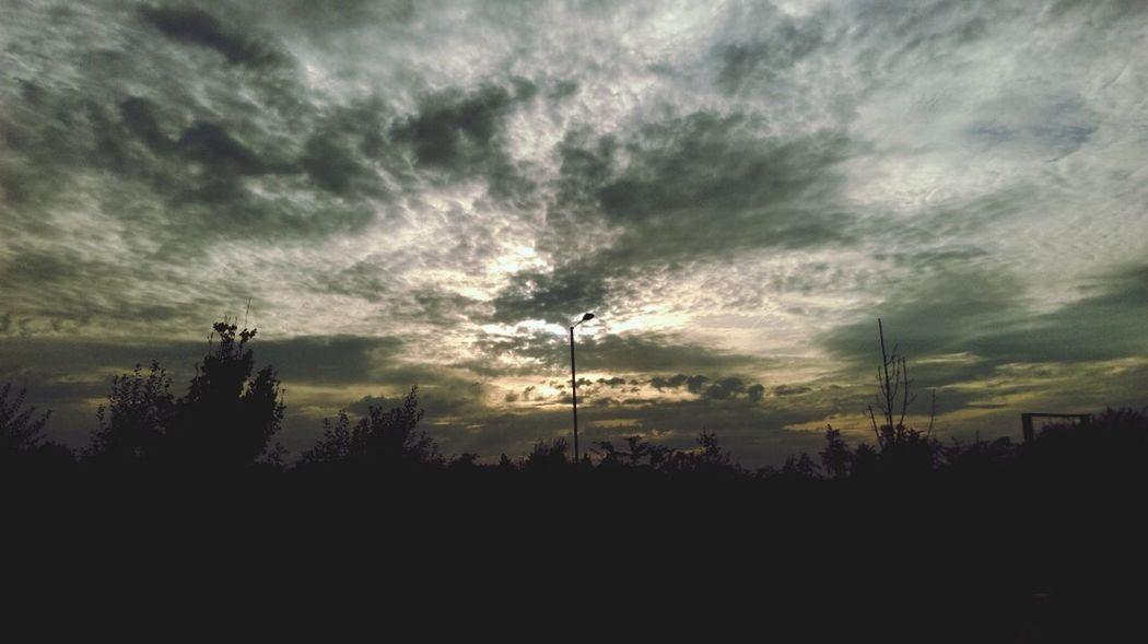 Sky Skycloud Sky Porn Sky And Trees