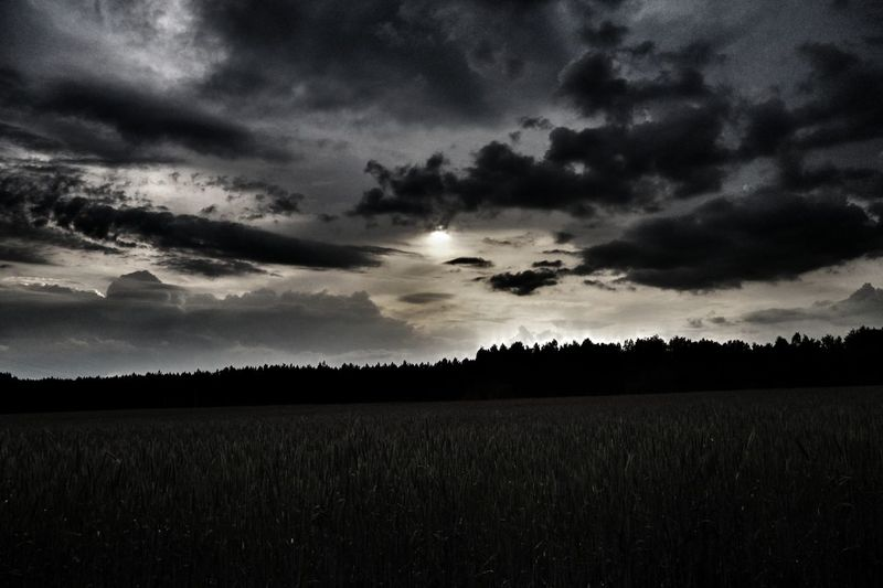 Tree Rural Scene Field Agriculture Sky Landscape Cloud - Sky Storm Cloud Storm Hurricane - Storm Extreme Weather Cumulonimbus Meteorology Lightning Cultivated Land Moody Sky Dramatic Sky