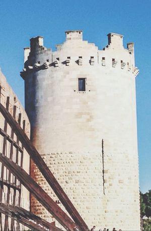 Il nostro castello :3