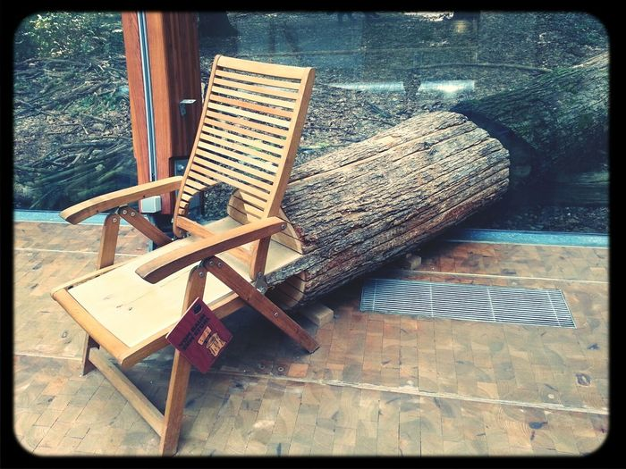 Wood Chair Nature Trees