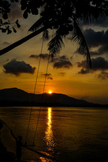 Ko Samui Sunset Silhouettes Beauty In Nature Cloud - Sky Idyllic Ko Samui Thailand Nature No People Non-urban Scene Outdoors Palm Tree Reflection Scenics - Nature Sea Silhouette Sky Sundown, Nightfall, Close Of Day, Twilight, Dusk, Evening Sunset Sunset #sun #clouds #skylovers #sky #nature #beautifulinnature #naturalbeauty #photography #landscape Sunsets Tranquil Scene Tranquility Tree Tropical Climate Water