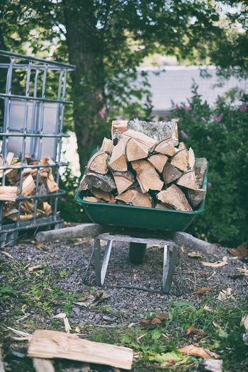 Stack of logs in field