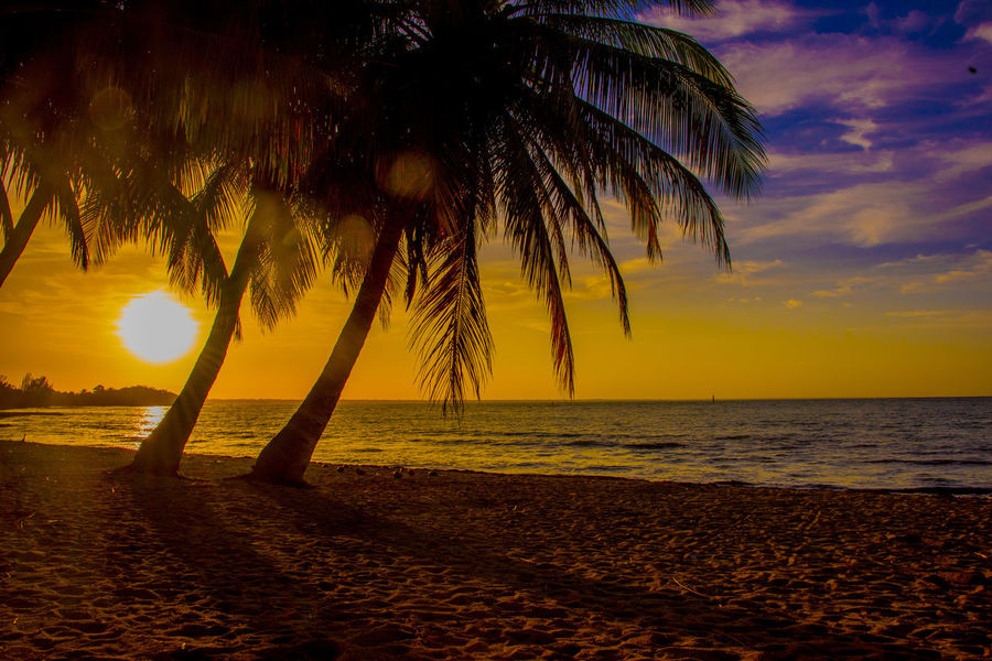 Bay Of Pigs Beach Beach Photography Cuba Palm Trees Palm Trees And Sunset Sunset
