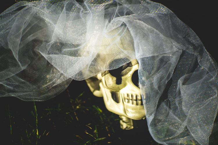 Close-up of human skull and veil on field at night
