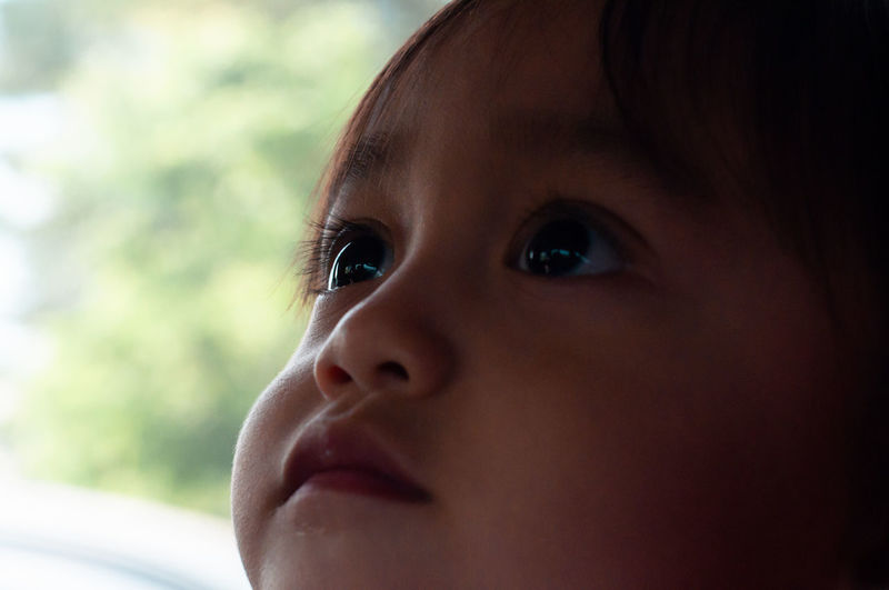 Portrait of an asian toddler baby, outdoor.