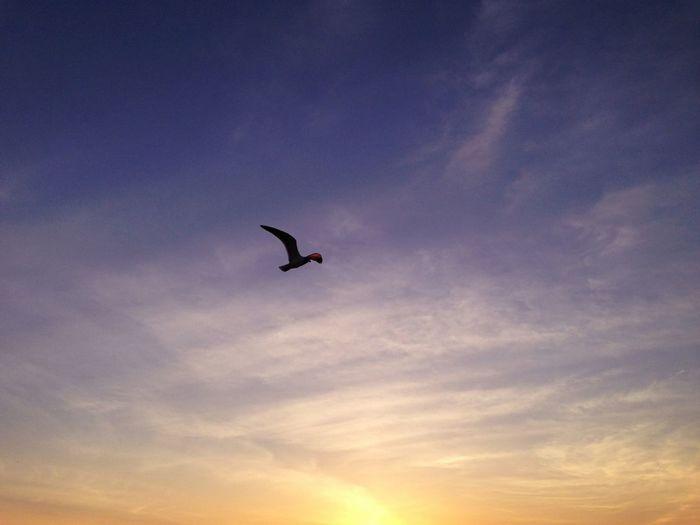This week in #ocnj always flies.