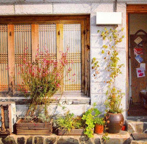 Korea Hanok Bukchon Hanok Village Hanok Village