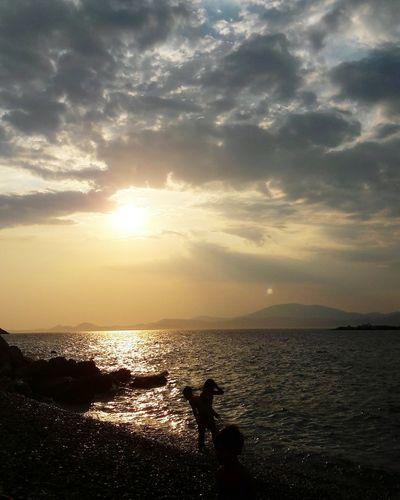 First Eyeem Photo Hydra Island Greek Islands Sunset Colours Sea And Sky View Scenery Shots Nature Greeksunset Greeksummer Summervibes 💥