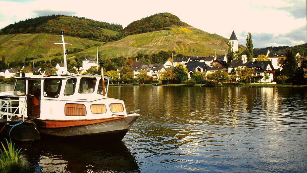 Boat Ferry Fluss Fähre River Riverside Vineyards  Weinberge