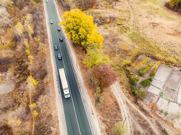 High angle view of road amidst plants in city during autumn