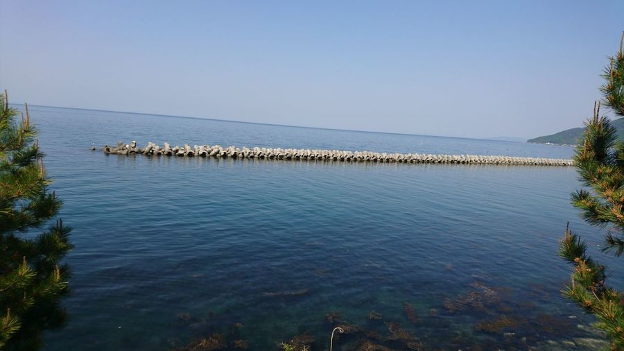 Outdoors No People Day Animal Themes Sea Water Animals In The Wild Large Group Of Animals Blue Nature Clear Sky Groyne Beauty In Nature Sky Bird