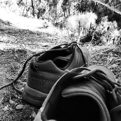 Tiring Journey Trek Himyalayanexpresshighway Gagans_photography