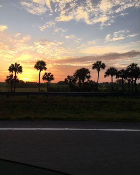 Immokalee Sunrise Enjoying The Sights MeinAutomoment