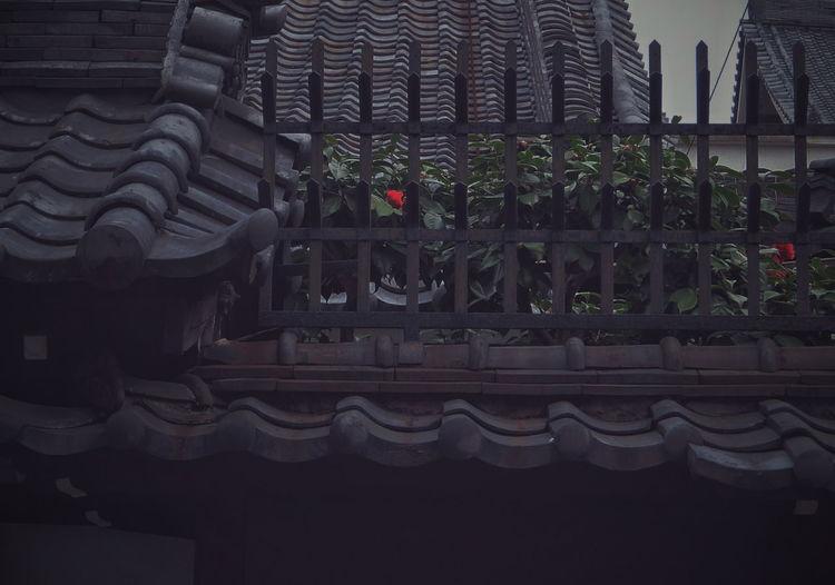 ゆ2017JapanPics VSCO Vscocam ゆ京系列 ゆ2017act&n at 下京区 Kyoto, Japan