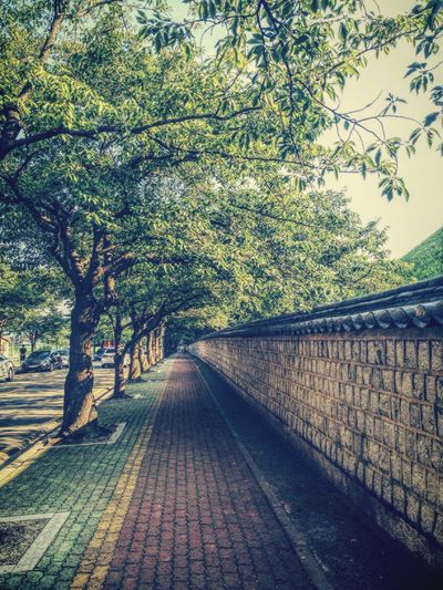 Beautiful street in kyunju, korea. Enjoying Life Streetphotography South Korea Iphonephotography Daily Travel
