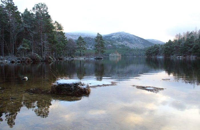 Cairngorms National Park Loch An Eilein Reflection Scotland Shades Of Winter Beauty In Nature Day Lake Mountain Nature No People Outdoors Reflection Reflection In The Water Scenics Sky Tranquil Scene Tranquility Tree Water Waterfront