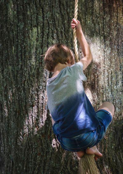 Boy swinging on rope near tree trunk
