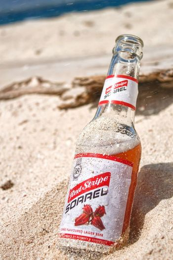 real Jamaican ting Beach Sand Bottle Drink Summer Alcohol Sea Cork - Stopper Vacations Water Close-up Day Outdoors No People Nature Sky