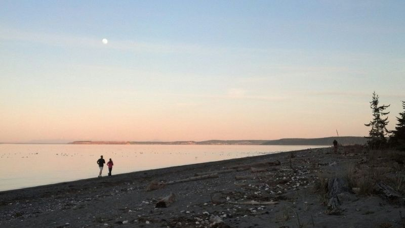 Sunset at Jamestown Beach, Sequim, WA Beachphotography Sunset Silhouettes Bestoftheday The Week On Eyem EyeEm Gallery Running Free Eyeem Market Check This Out What I Saw Today  Outdoor Photography Pastel Power Couples Exercise