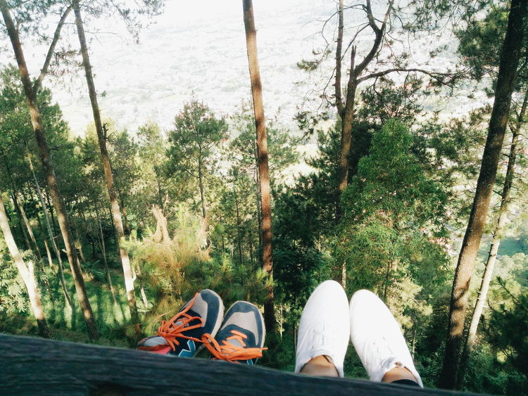 🌲🌳🌴 #EyeEmNewHere Holiday Malang Malangtrip INDONESIA Beauty In Nature Mountain Shoes Vacations Young Adult Young People Summer In The City