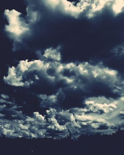 Mood Mood Blue Cloud - Sky Sky Beauty In Nature Nature Scenics - Nature Low Angle View No People Cloudscape Tranquility Tranquil Scene Day Environment Storm Cloud Storm Backgrounds Overcast Outdoors Dramatic Sky Plant Ominous