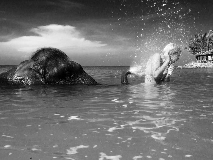 Elephant spraying water on woman in sea against sky