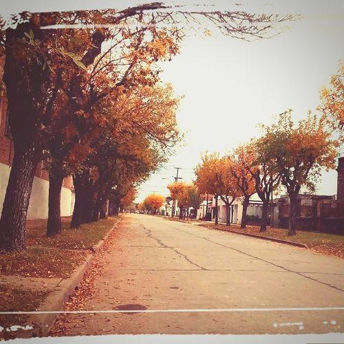 Otoño y sus paisajes...❤