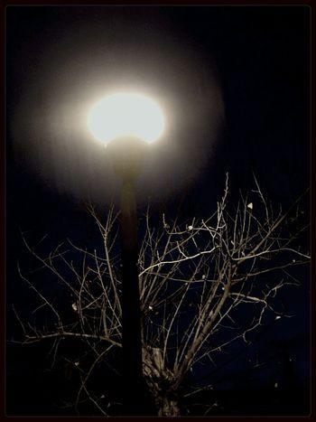 Ulan-Ude Streetphoto Park Night