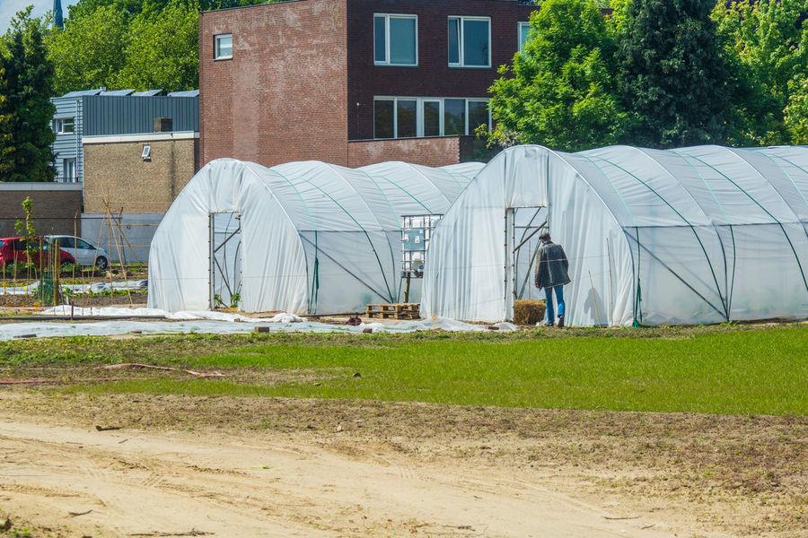 urban farming site Day Farming Field Grass Growing Plants Tent Urban Urban Farming Working
