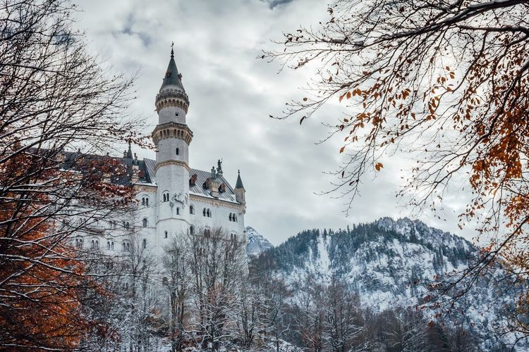 Schwangau, Germany - November 17, 2017: Looking up Neuschwanstein Castle (Schloss Neuschwanstein) from the town below, surrounded by fog, trees showing autumn colors, and snow covered mountain and trees Built Structure Building Exterior Architecture Tree Plant Building Nature Cold Temperature Winter Place Of Worship Low Angle View Tower Branch Snow Sky Travel Destinations Belief No People Outdoors Spire  Neuschwanstein Castle Schloss Dramatic Sky Disney My Best Photo