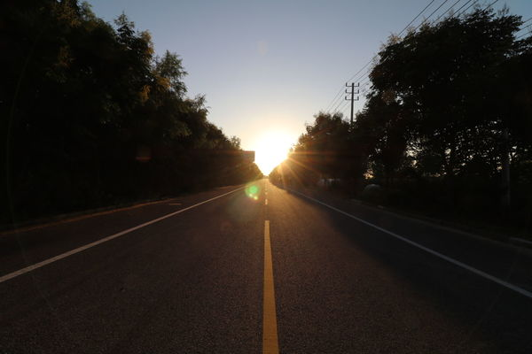 Sunset Road Tree People Sun The Way Forward Sunlight Adult Sky Human Body Part Outdoors One Person Clear Sky Day Nature Adults Only Politics And Government Only Men Young Adult EyeEmNewHere