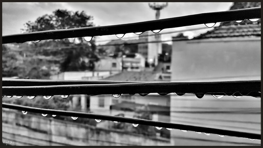 Focus On Foreground Railing Water Wet Close-up Day Barrier Footpath City Life No People Journey Balustrade Raining Day Rain Rainy Days Drops Of Water