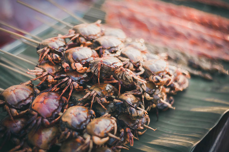 Close-up of crabs on banana leaf