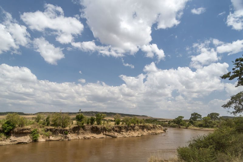 Game safari in Kenya Acacia Adventure Africa Cloud - Sky Clouds Extreme Weather HDR Lake Landcruiser  Landscape Masaimara River Nature Outdoors River Safari Savanah Scenics Sky Sky Scape Sunrise Travel Tree Water Wildlife & Nature Wildlife Photography