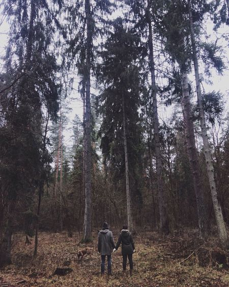 Showcase: December IPS2015Fall Fall Forrest Forrest Photography Couple Love EyeEm Nature Lover Poland Podlasie