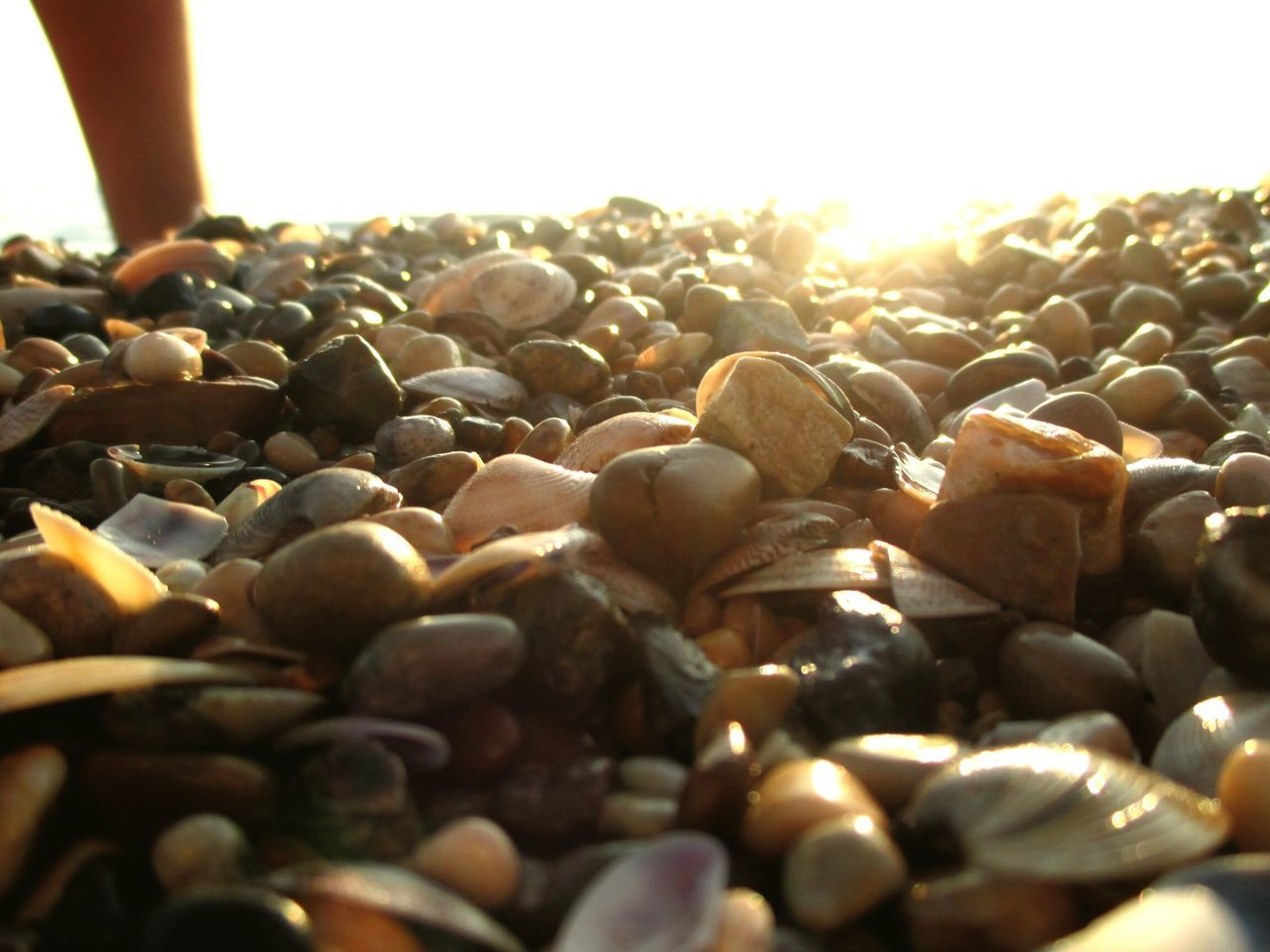 Midsection Of Person On Pebbles At Beach
