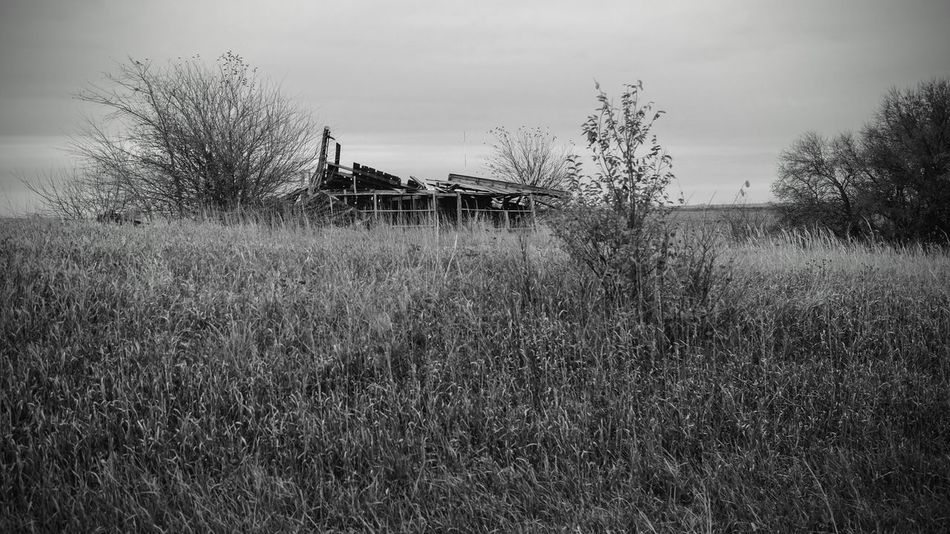 Visual Journal November 4, 2016 Village of Western, Nebraska and Alexandria, Nebraska A Day In The Life Abandoned & Derelict Abandoned Places B&w Photography Blackandwhite Photography Camera Work Country Life EyeEm Best Edits EyeEm Best Shots Farm Fujifilm_xseries Grassland Great Plains Landscape Landscape_Collection MidWest My Neighborhood Nebraska Outdoors Photo Diary Photo Essay Prarie Rural America Rural Decay Visual Journal