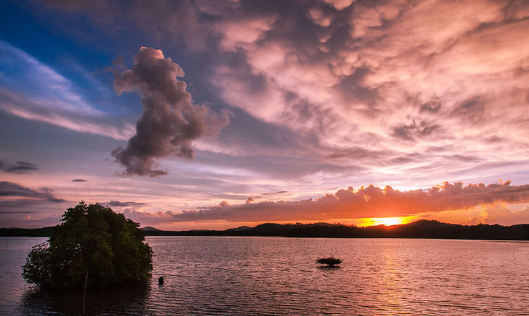 Mengkabong Sunset view.. NikonAsia Beauty In Nature Forsale Hsphoto Landscape_photography Lightroom Malaysiaphotography Nature Nikonclub Nikonmalaysia Nikonphotographer Northborneo Photooftheday Preset Sabah Sunset Sunsetmoment Sunsetoftheday